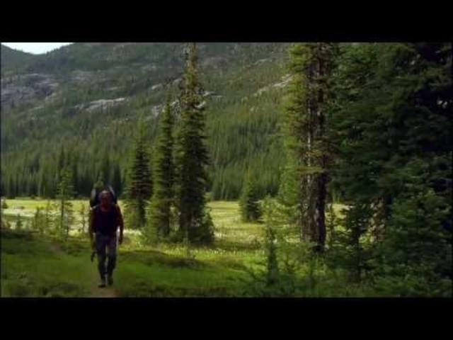 Creative Nature – Paragliding - William Morris glass